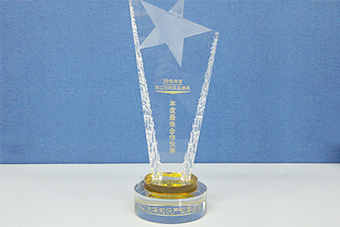 2010 Partner of the Year trophy