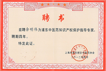 Pudong Chinese Medicine Hospital intellectual property expert letter of appointmen